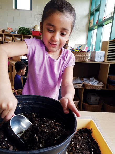 14-Day Salad: Using Project-Based Learning to Grow